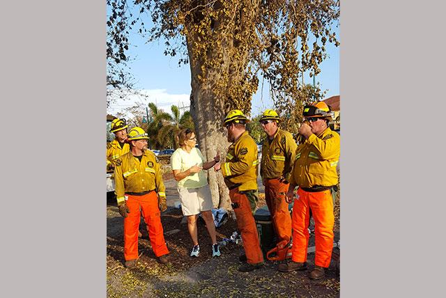Hurricane Irma Tree Cutting Crew